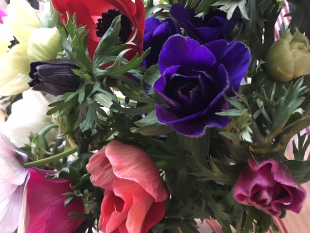 Nainenyliviiskyt_flowers_lupaus