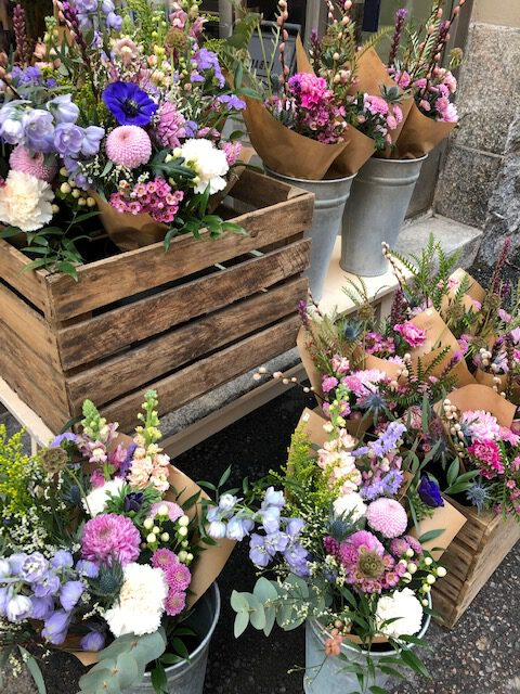 Flowers_kukat